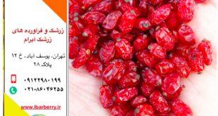 فروش زرشک در تهران -۳۰ مهر ماه ۹۸